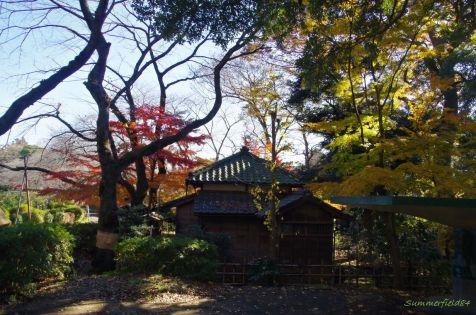 里見公園の紫烟草舎