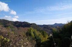 散策中の景色