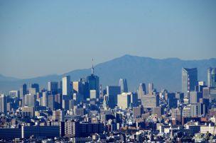 頭だけの東京タワーと六本木ヒルズと大山