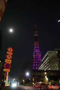 霞み満月と東京タワー