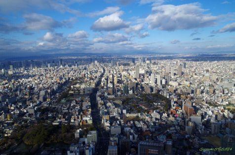 左下:茶臼山 中央大阪城公園