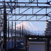 富士山@新鎌ヶ谷駅