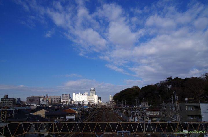 常磐線を渡る陸橋から松戸駅方面:右の丘に戸定駅市公園があります。