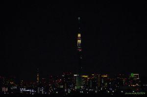 東京タワー点灯中、スカイツリー切替中