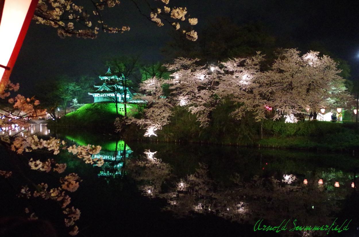 高田公園の夜桜2015@新潟県上越市