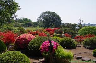 好文亭の中庭